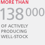 138 000 Thousand of actively producing well-stock